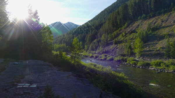 Photograph of early morning on the middle fork of the Flathead.