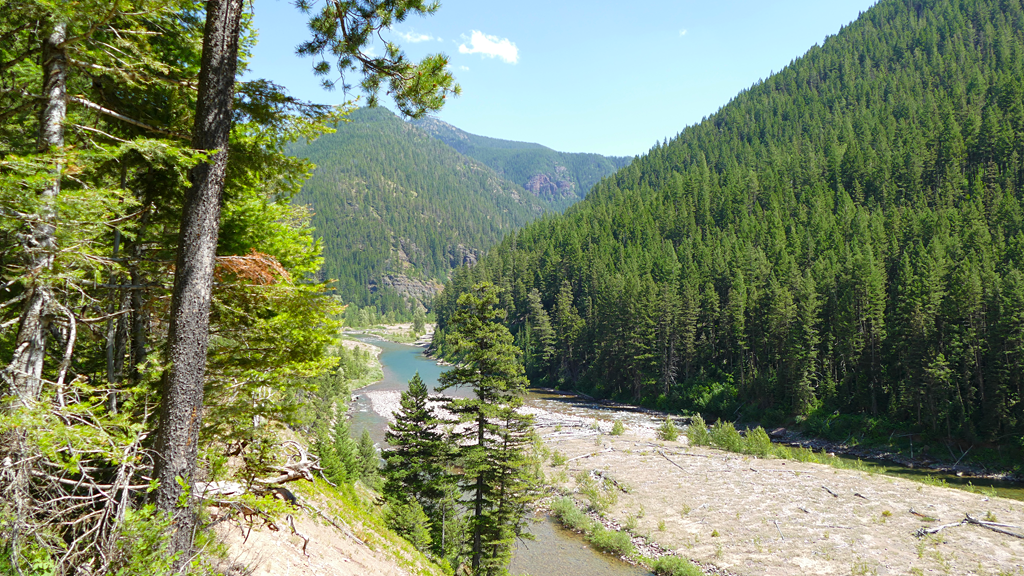 Photo of an overview of the Flathead River.