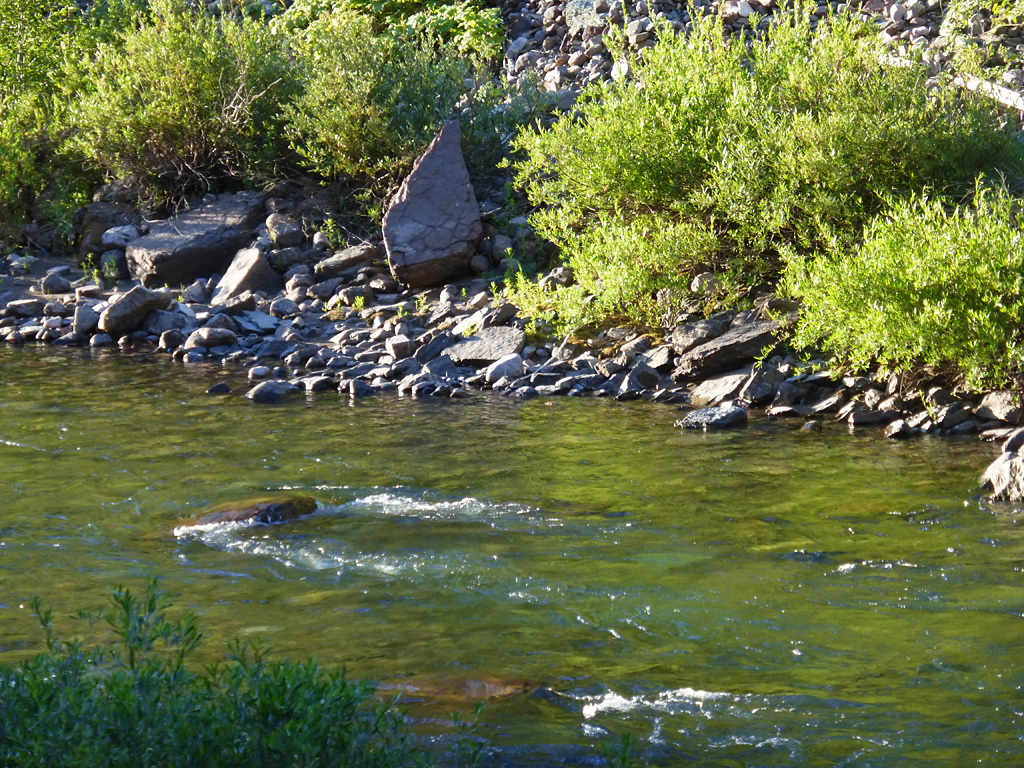 Photo of the Flathead River