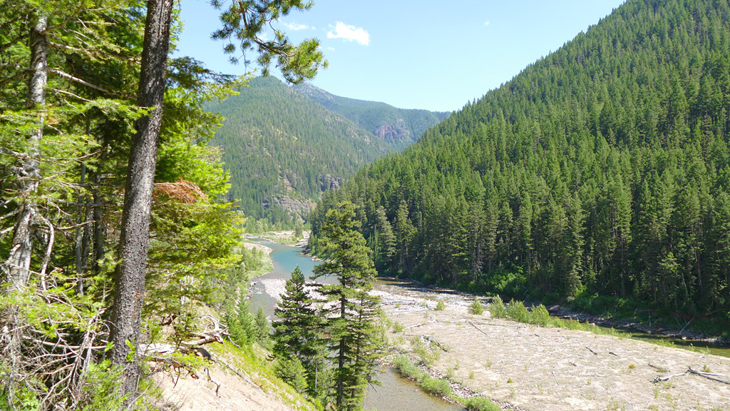 Photo of an overview of the middle fork of the Flathead River