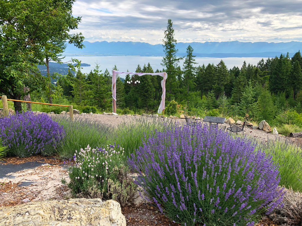 Purple Mountain Lavender Farm