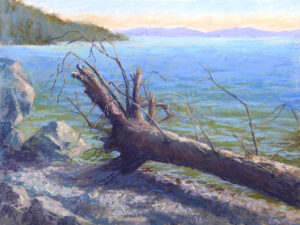 Photo of a pastel painting of a log on Flathead Lake