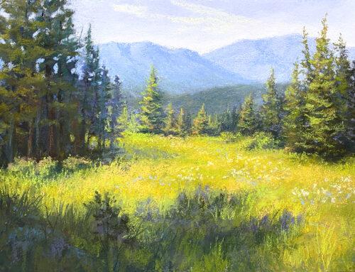A Meadow Walk