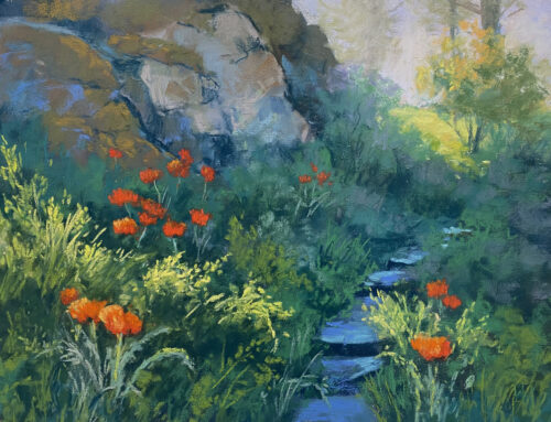Somers' Poppies